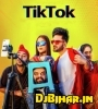 Tere Sang Pal Do Pal Ko Hasna Jo Chaha To Tik tok Mp3 Song Download